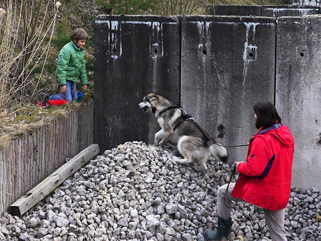 Abenteuerurlaub Hundeschule Ruckdeschel