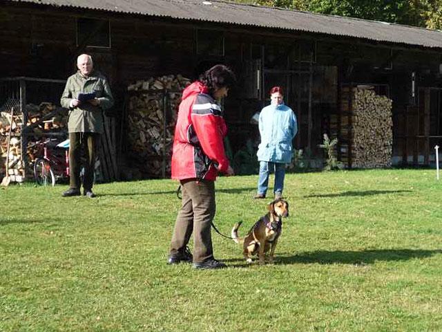 Begleithundeprüfung Hundeschule Ruckdeschel