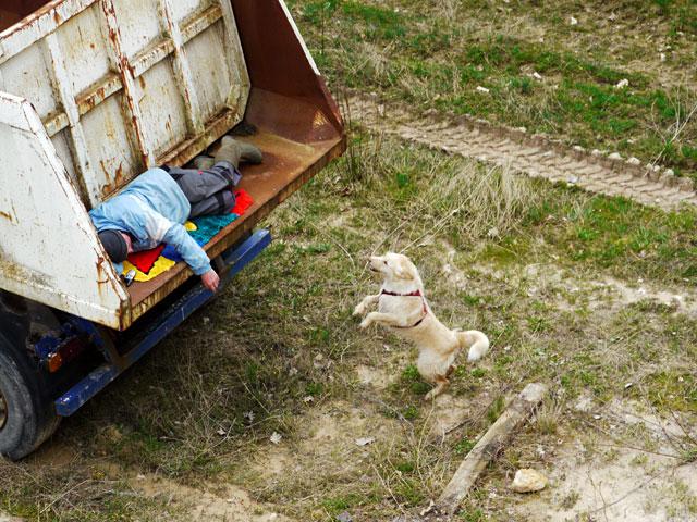 Fährtensuche Hundeschule Ruckdeschel